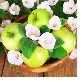 distinctly kelowna tours apple varieties