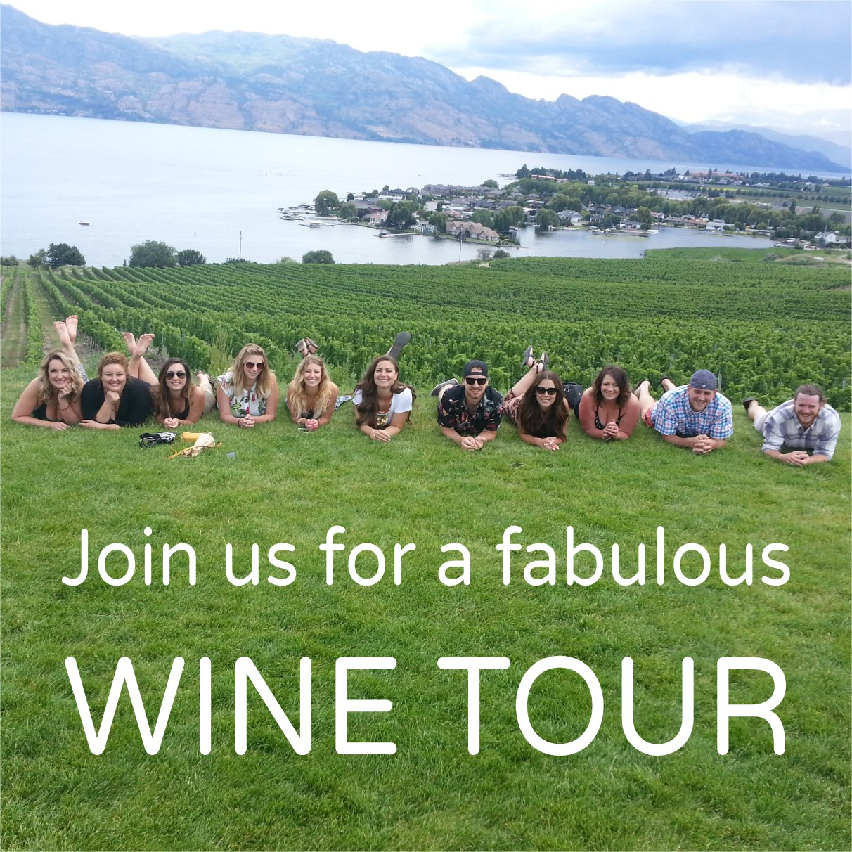 distinctly kelowna wine tours
