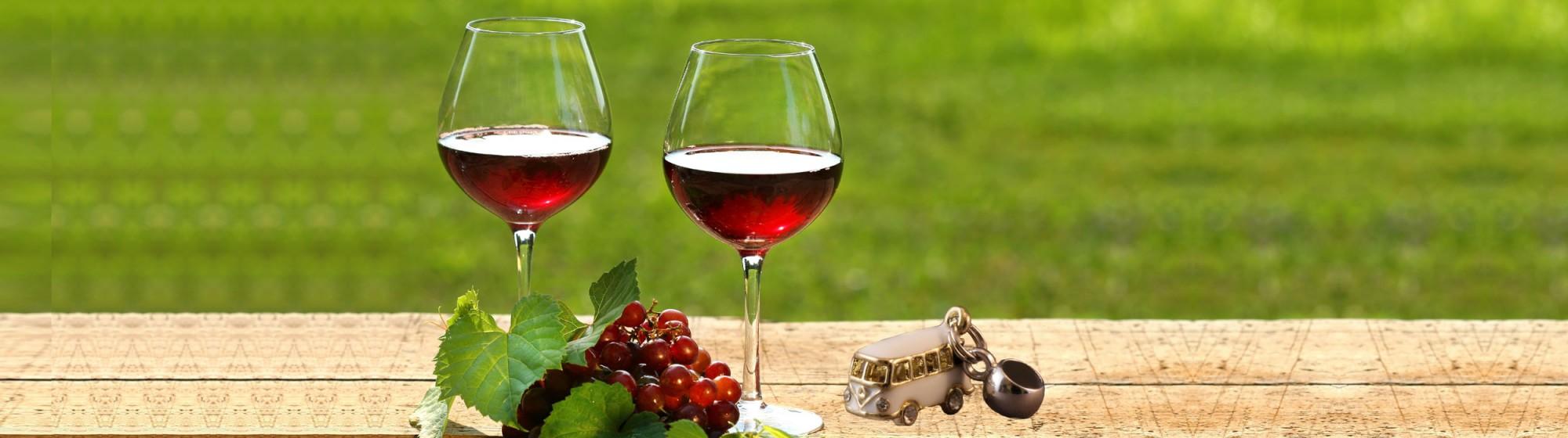 distinctly kelowna wine tours-westside bench beadtrails tour